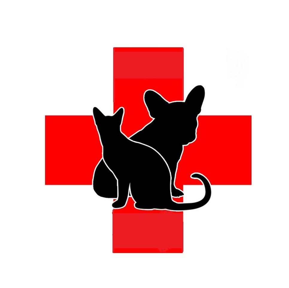 Callaway County Small Animal Veterinary Clinic